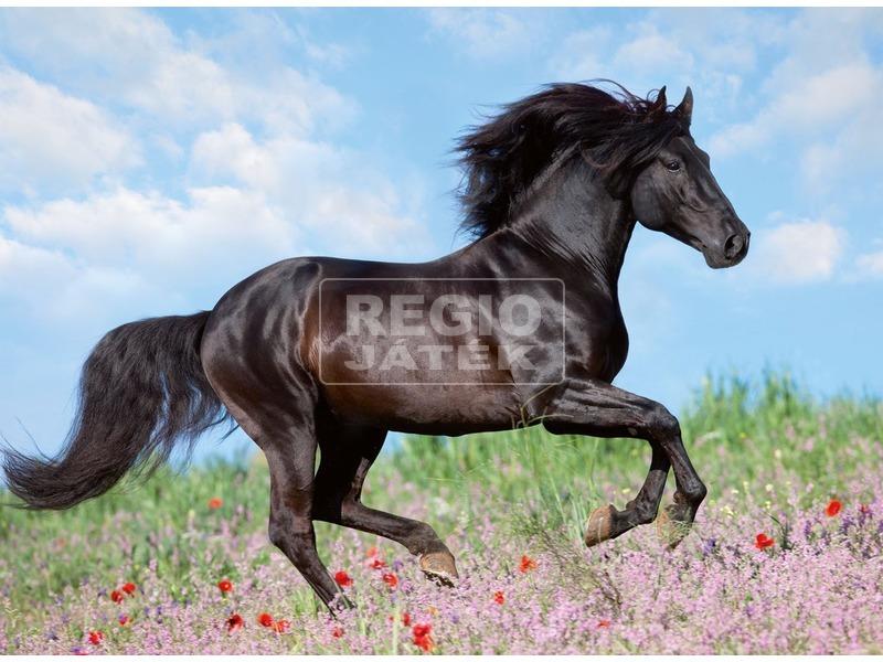 kép nagyítása Fekete ló 200 darabos XXL puzzle