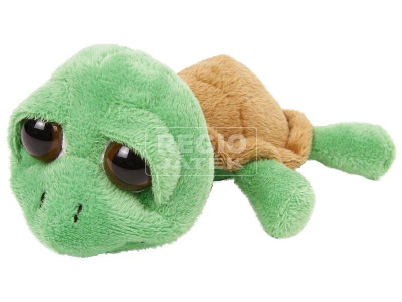 Nagyszemű teknős 6. 5