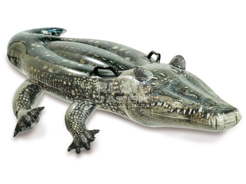 Aligátor hullámlovagló - 170 x 86 cm