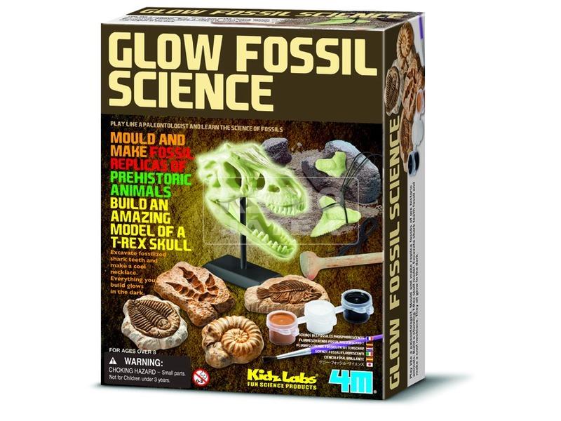 4M foszforeszkáló őskövület készlet