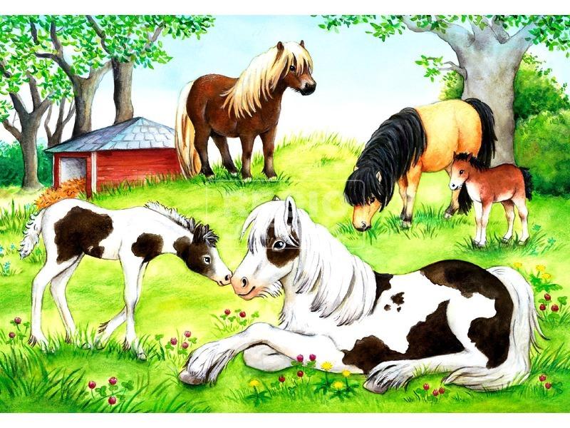 kép nagyítása Lovak 2 x 24 darabos puzzle