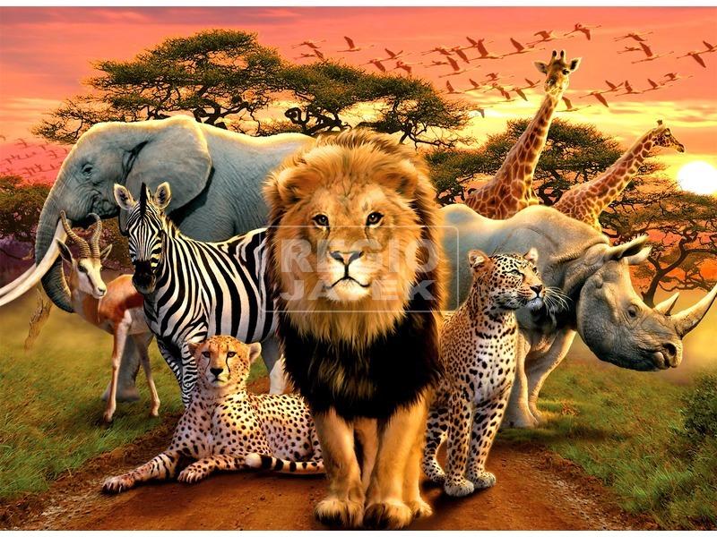 Puzzle 500 db - Afrikai állatok