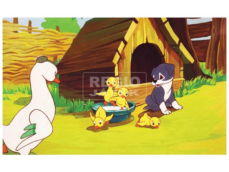 kép nagyítása Kutyakötelesség diafilm 34101892