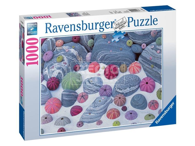 Tengeri kagylók 1000 darabos puzzle