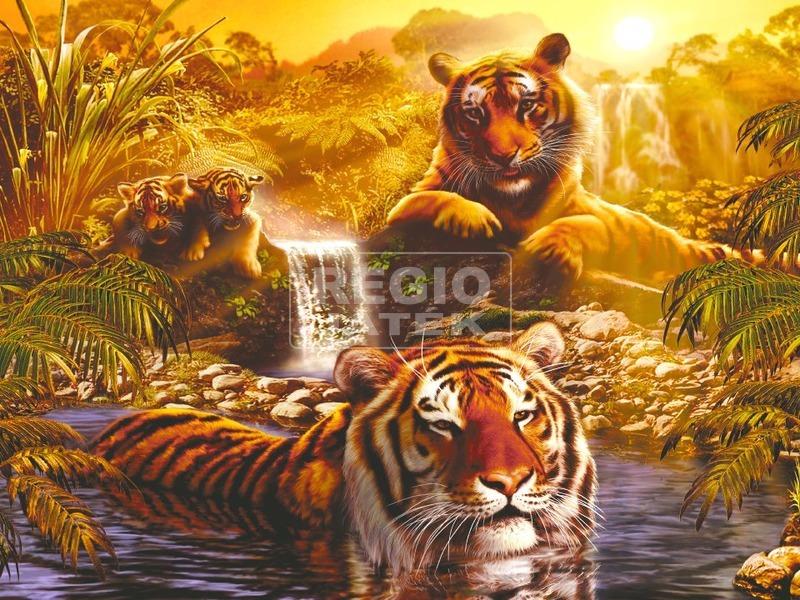 Puzzle 2000 db - Tigrisek