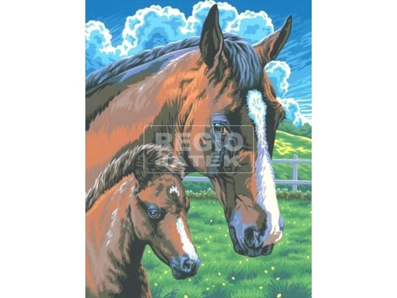 Ló és csikó kifestő számok szerint