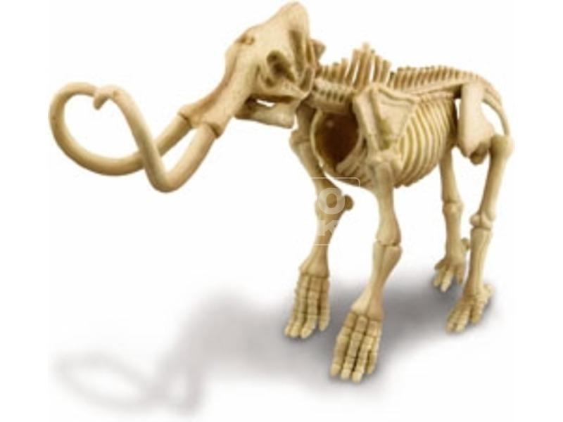 kép nagyítása 4M őslény régész készlet - mamut