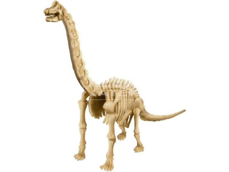 kép nagyítása 4M dinoszaurusz régész készlet - Brachiosaurus