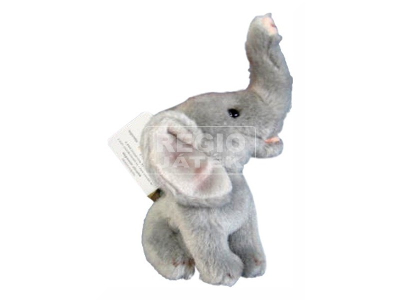 Elefánt ülő 4. 5