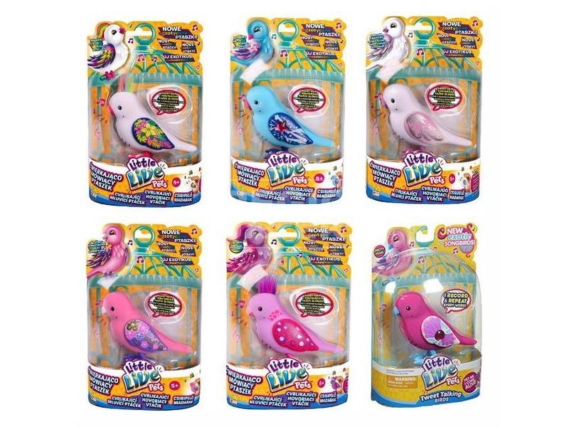 Tenyérnyi barátok papagáj - többféle