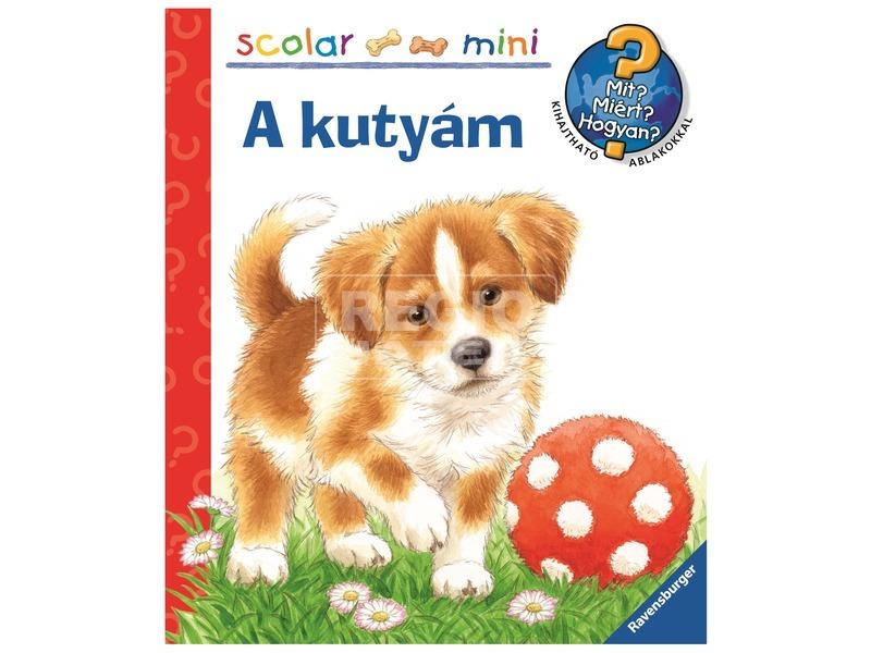 A kutyám foglalkoztatókönyv