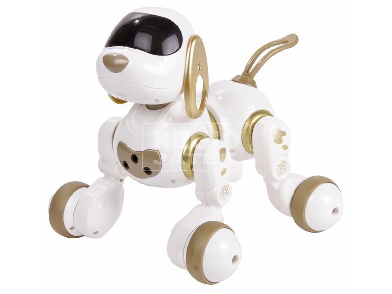 kép nagyítása Dexterity a távirányítós robotkutya