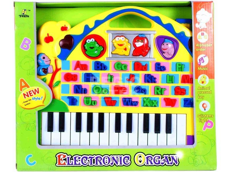 Tanuló orgona