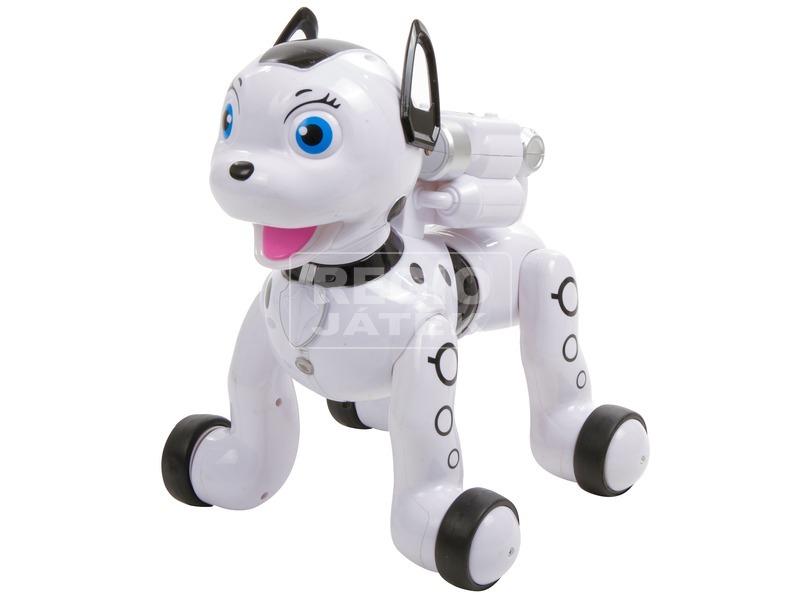 kép nagyítása Rádiótávirányítású kutya