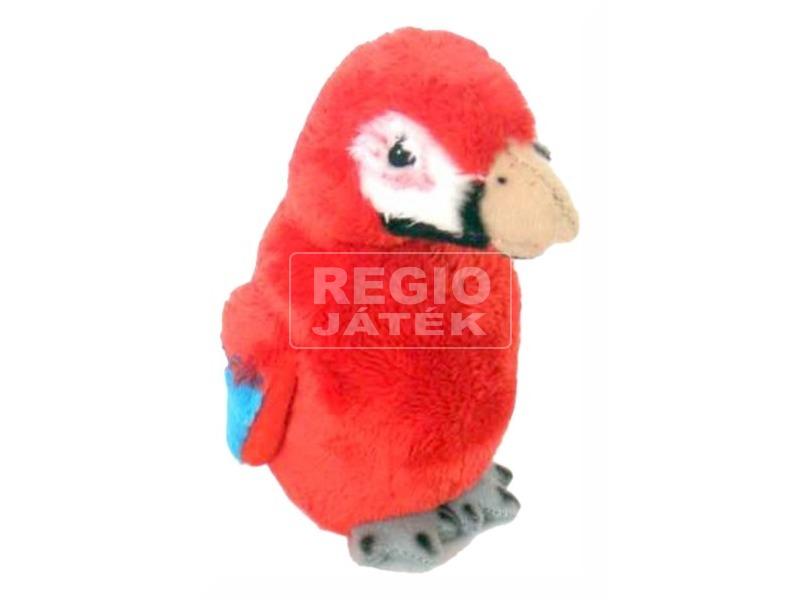 Papagáj piros 5