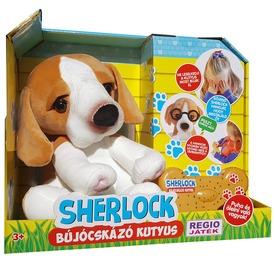 Sherlock a bújócskázó kutyus