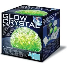 4M világító kristálynövesztő készlet