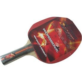 Vektory pingpong ütő