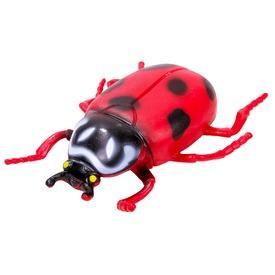 Műanyag rovar figura - többféle Itt egy ajánlat található, a bővebben gombra kattintva, további információkat talál a termékről.