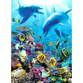 Puzzle 300XXL - Víz alatti kaland Itt egy ajánlat található, a bővebben gombra kattintva, további információkat talál a termékről.