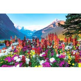 Virágzó hegyvidék 3000 darabos panoráma puzzle Itt egy ajánlat található, a bővebben gombra kattintva, további információkat talál a termékről.