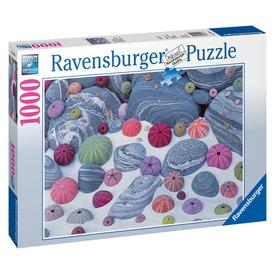 Tengeri kagylók 1000 darabos puzzle Itt egy ajánlat található, a bővebben gombra kattintva, további információkat talál a termékről.
