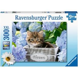 Puzzle 300 db - Kicsi cicák