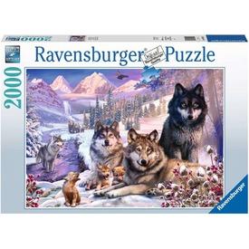 Puzzle 2000 db - Farkasok a hóban