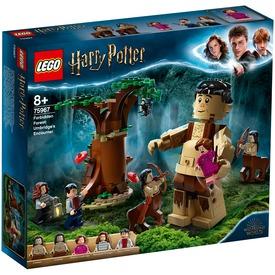 LEGO® Harry Potter™ A Tiltott Rengeteg: Összecsapás Umbridge-dzsel 75967