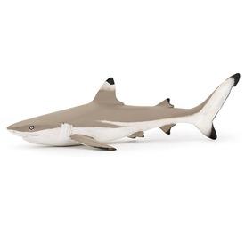 Papo feketeúszójú szirti cápa 56034