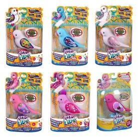 Tenyérnyi barátok papagáj - többféle Itt egy ajánlat található, a bővebben gombra kattintva, további információkat talál a termékről.