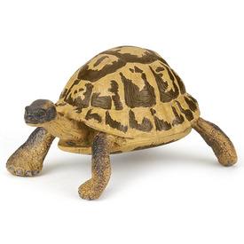 Hermann teknős