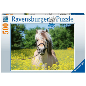 Puzzle 500 db - Ló a repcemezőn