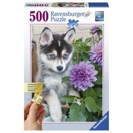 Puzzle 500 db - A szomorú Husky