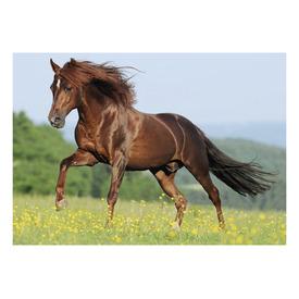 Puzzle 500 db - Ló a mezőn