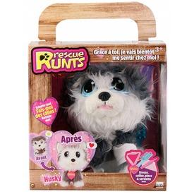 Rescue Runts husky