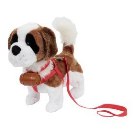 Samby, az interaktív bernáthegyi kutyus