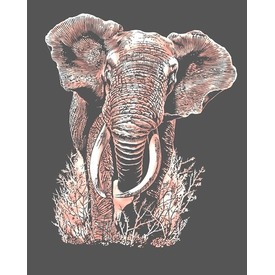 Réz képkarcoló - Elefánt KSG 0539 Itt egy ajánlat található, a bővebben gombra kattintva, további információkat talál a termékről.
