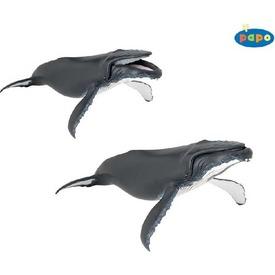 Papo hosszúszárnyú bálna 56001