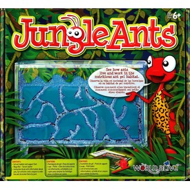 Jungle Ants hangyafarm