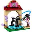 kép nagyítása LEGO Friends Kicsikó csutakoló 41123