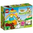 kép nagyítása LEGO DUPLO Házikedvencek 10838