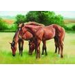 kép nagyítása Legelésző lovak 1500 darabos puzzle