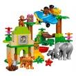 kép nagyítása LEGO DUPLO Dzsungel 10804